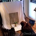 Domestic Diva: Food photography Shoot 1
